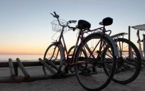 Alquilar bicicletas en Benidorm